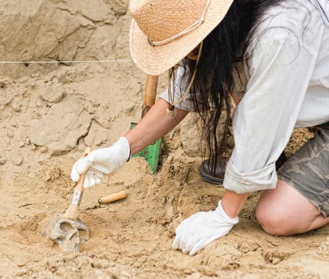 Initiation fouilles archéologiques.jpg